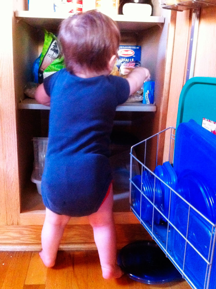 Boo getting into the cupboards