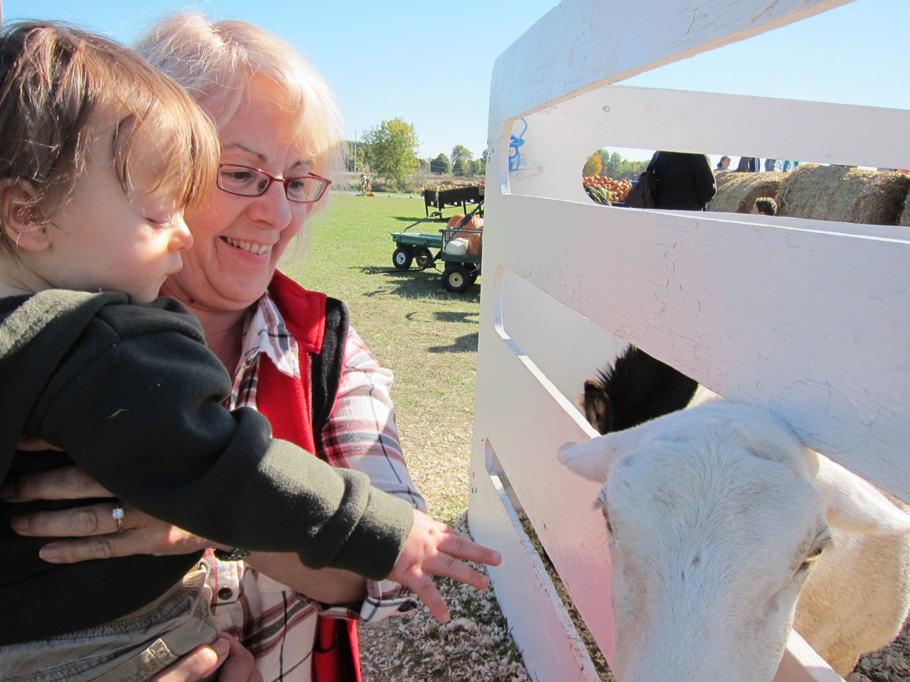 Nana and Boo at the petting zoo