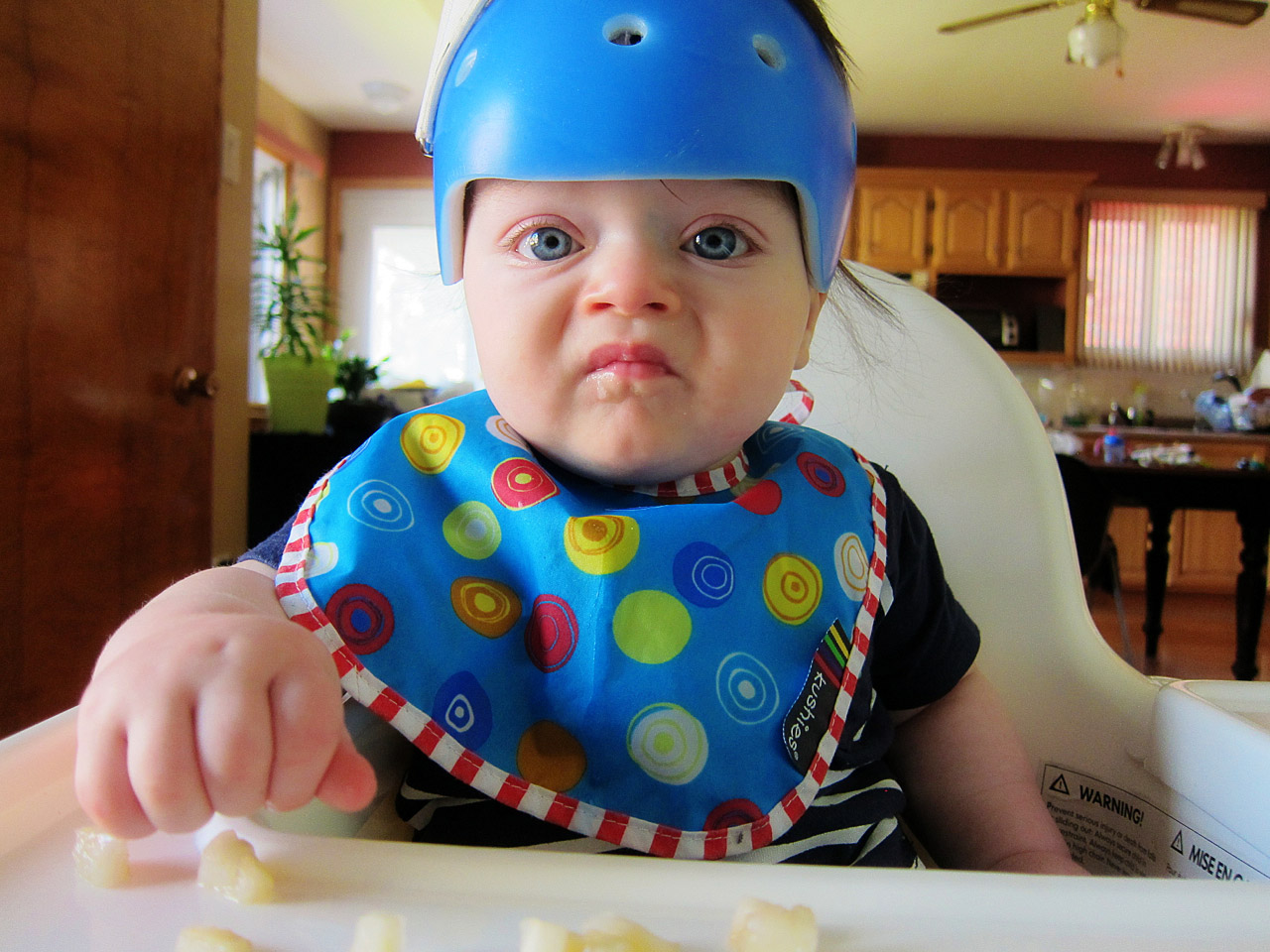 Boo wearing his helmet at his highchair