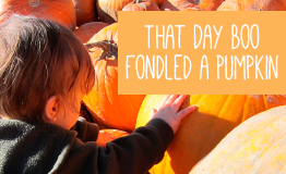 That day Boo fondled a pumpkin