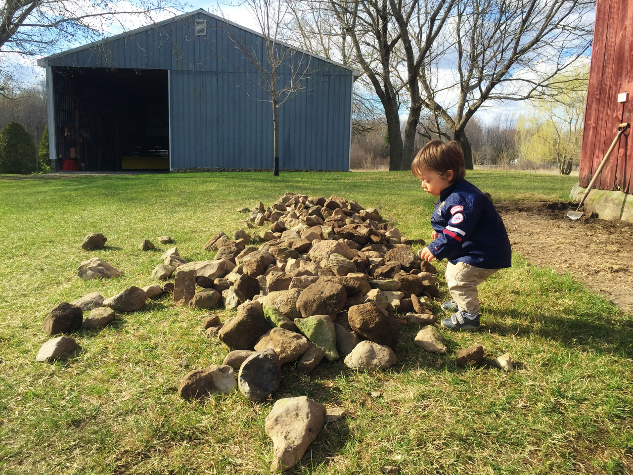 Boo and the rock pile