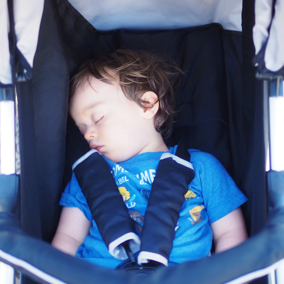 Boo napping in his stroller