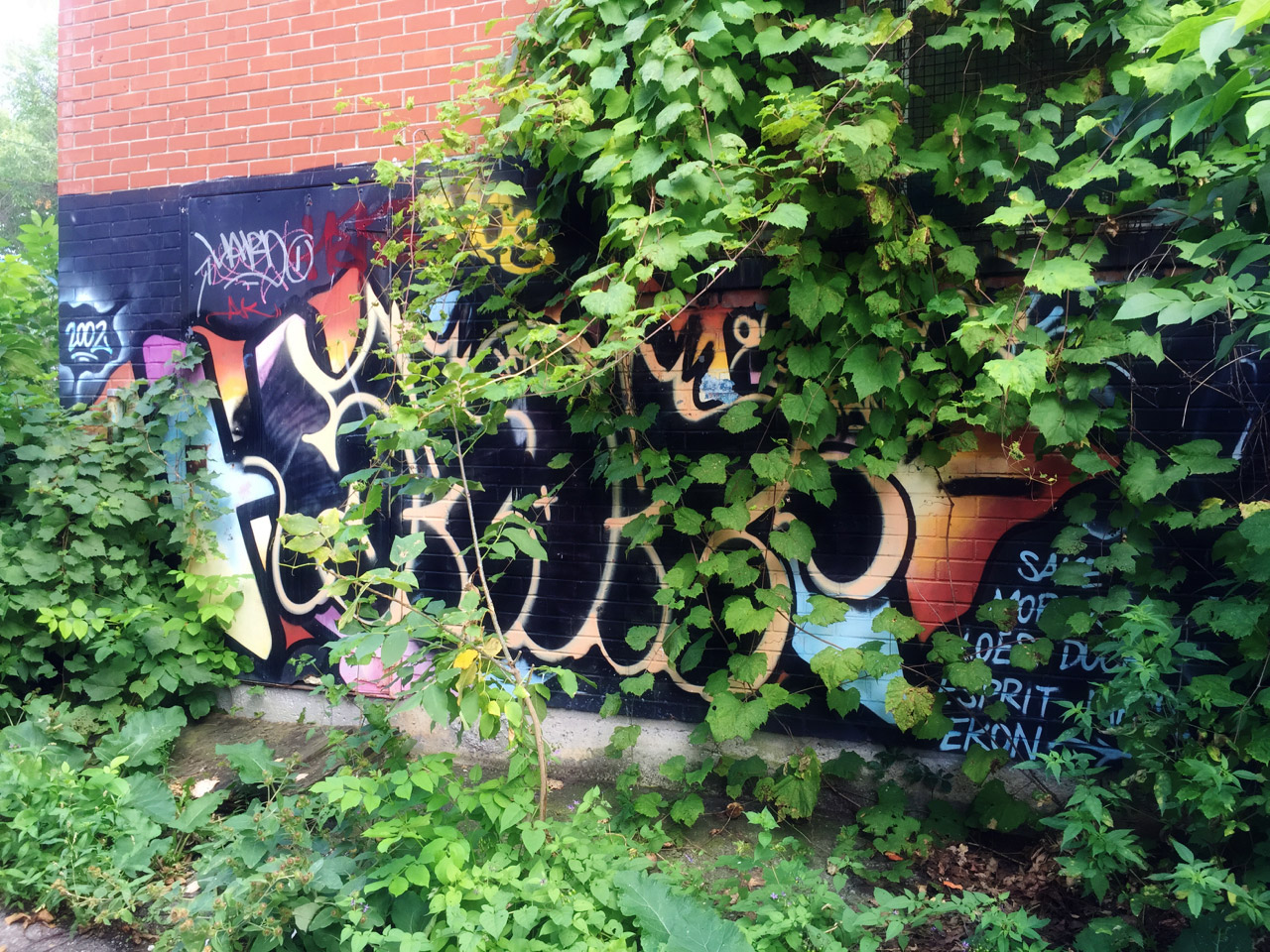 Overgrown graffiti